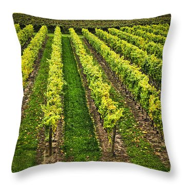 Vineyard Throw Pillow by Elena Elisseeva