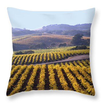 6b6386-vineyard In Autumn Throw Pillow