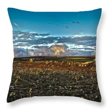 Vineyard In Lava Throw Pillow by Patricia Hofmeester