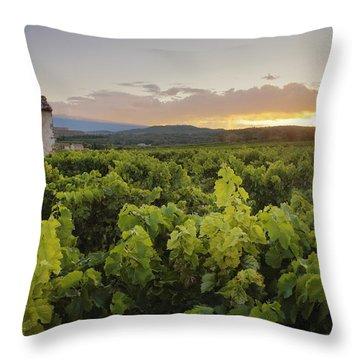 Vineyard Near Malemort-du-comtat Throw Pillow by Andy Kerry