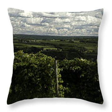 Vineyard On Keuka Lake Throw Pillow by Richard Engelbrecht