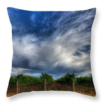 Vineyard Storm Throw Pillow