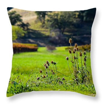 Throw Pillow featuring the photograph Vineyard Thistles by CML Brown