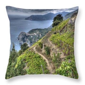 Vineyards Above Cinque Terre 1 Throw Pillow
