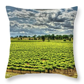 Vineyards Almost Ripe Throw Pillow