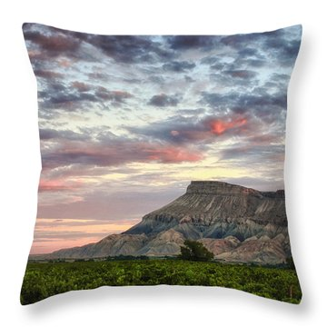 Vineyards And Mt Garfield Throw Pillow
