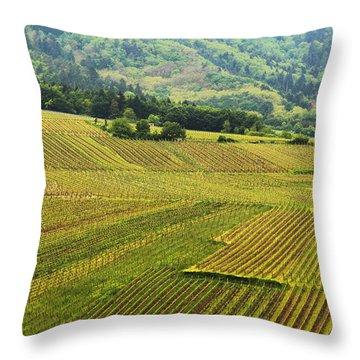 Vineyards Below Zellenberg France 1 Throw Pillow by Greg Matchick