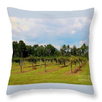 Vineyards Throw Pillow by Eloise Schneider