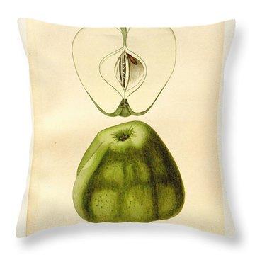 Vintage Apple Throw Pillow