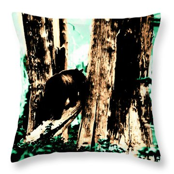 Vintage Bear In The Mount Rainier Forest Early 1900 Era... Throw Pillow