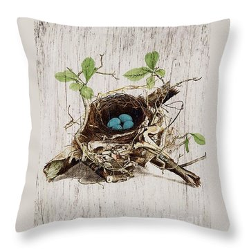 Vintage Bird Nest French Botanical Art Throw Pillow by Cranberry Sky
