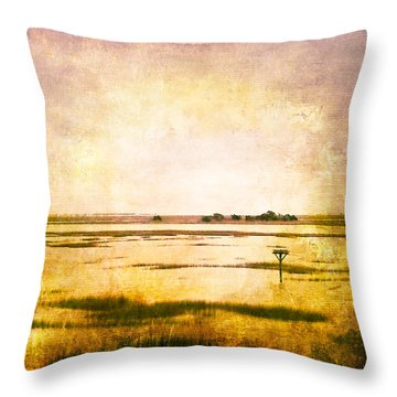 Throw Pillow featuring the photograph Vintage Warm Sunrise Sunset Image Art By Jo Ann Tomaselli by Jo Ann Tomaselli