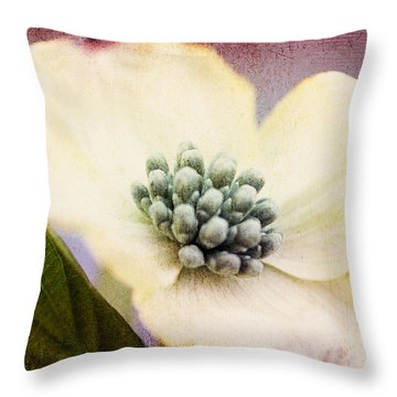 Throw Pillow featuring the photograph Vintage Dogwood Blossom by Trina  Ansel