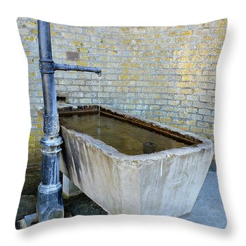 Vintage Fountain Throw Pillow by Felicia Tica