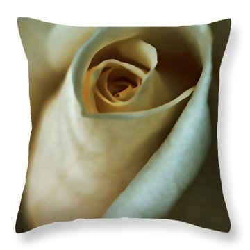 Vintage Macro Rose Flower Throw Pillow by Jennie Marie Schell