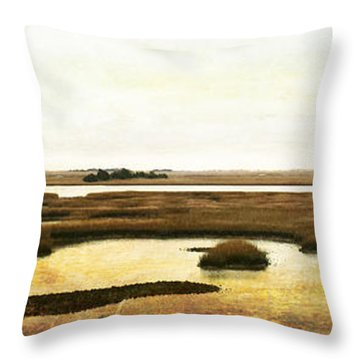 Throw Pillow featuring the photograph Vintage Marsh Panorama Image Art by Jo Ann Tomaselli