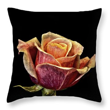 Throw Pillow featuring the photograph Vintage Rose by Mitch Shindelbower