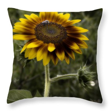 Vintage Rustic Sunflower Throw Pillow
