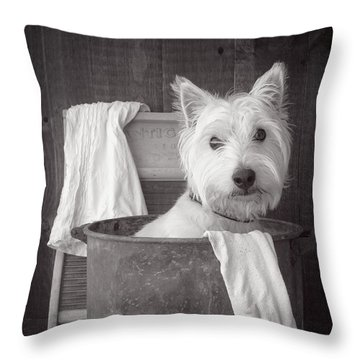 Vintage Wash Day Throw Pillow