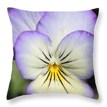 Viola Named Sorbet Lemon Blueberry Swirl Throw Pillow by J McCombie