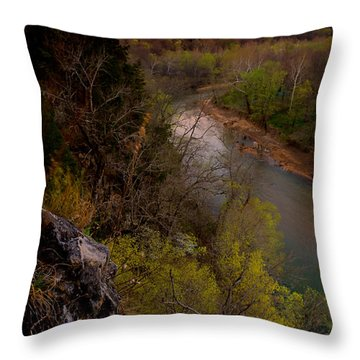 Violet And Vultures Throw Pillow