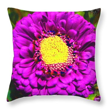 Throw Pillow featuring the photograph Violet And Yellow Beauty by Merton Allen
