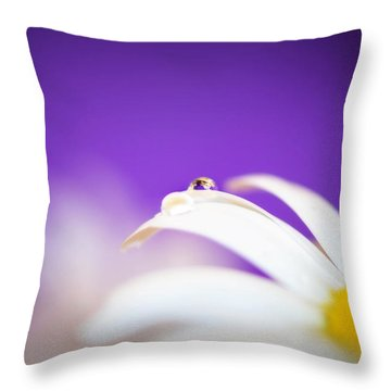 Violet Daisy Dreams Throw Pillow by Lisa Knechtel