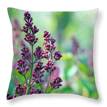 Violet Lilacs Budding Throw Pillow by Karon Melillo DeVega