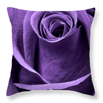 Violet Rose Throw Pillow by Adam Romanowicz
