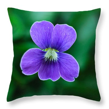 Violet Splendor Throw Pillow