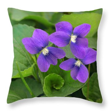 Violet Trio Throw Pillow