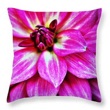Virbrant Pink Dahlia Throw Pillow by Judy Palkimas