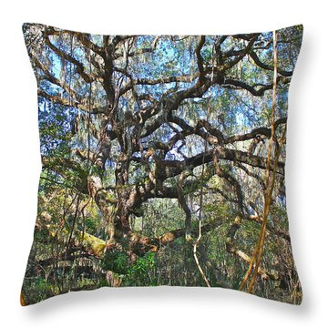 Throw Pillow featuring the photograph Virgin Forest by Lorna Maza