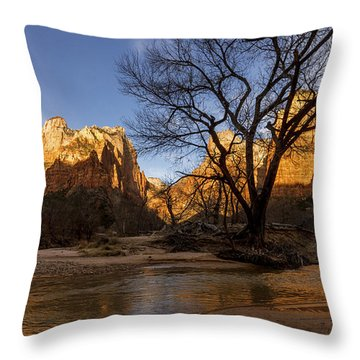 Virgin Reflection Throw Pillow