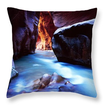 Virgin River At Zion National Park Throw Pillow by Panoramic Images