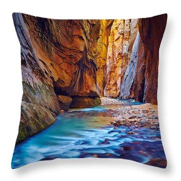 Virgin River In The Narrows Throw Pillow