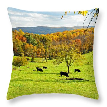 Throw Pillow featuring the photograph Virginia Autumn by Olivia Hardwicke