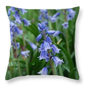 Throw Pillow featuring the photograph Virginia Blue Bells  by Eva Kaufman