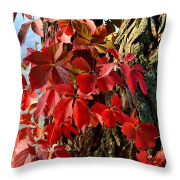 Virginia Creeper Throw Pillow
