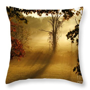 Virginia Sunrise Throw Pillow by Carol Lynn Coronios