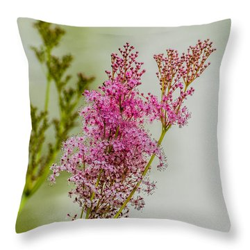 Vision In Pink Throw Pillow