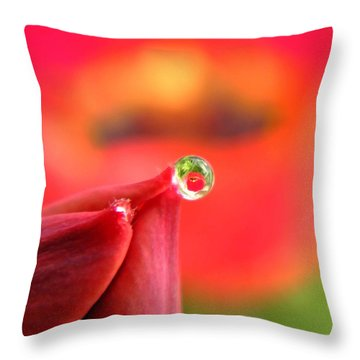 Vision Of Tomorrow  Throw Pillow by Chris Berry