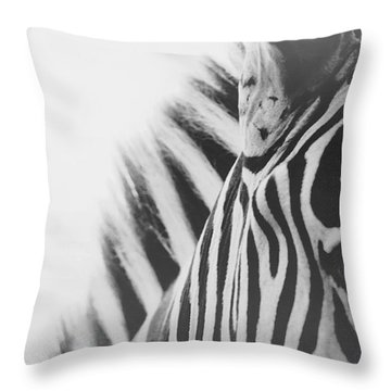 Zoo Animals Throw Pillows