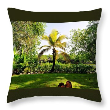 Visiting A Mayan Trail Throw Pillow