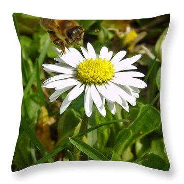 Visiting Miss Daisy Throw Pillow by Nina Ficur Feenan