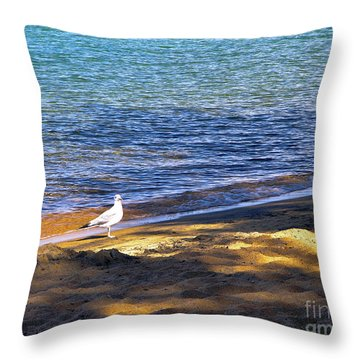 Visitor - Lake Tahoe Throw Pillow