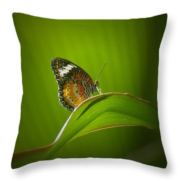 Throw Pillow featuring the photograph Visitor by Randy Pollard