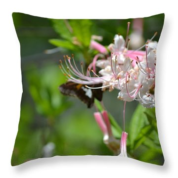 Throw Pillow featuring the photograph Visitor by Tara Potts