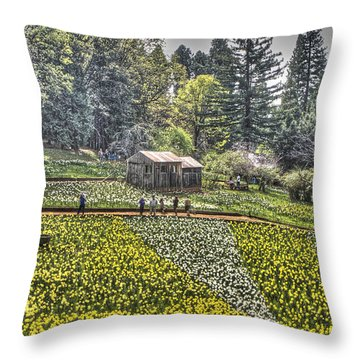 Visitors On Daffodil Hill Throw Pillow