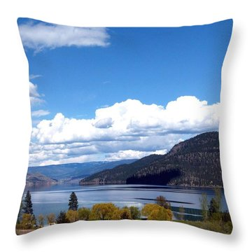 Vista 21 Throw Pillow